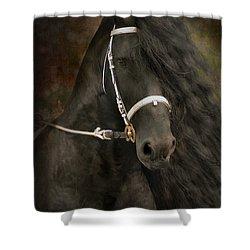 Chiaroscuro Shower Curtain by Fran J Scott