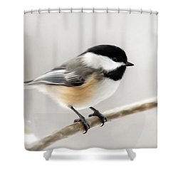Chickadee Shower Curtain by Christina Rollo