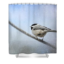 Chickadee In The Snow Shower Curtain by Jai Johnson