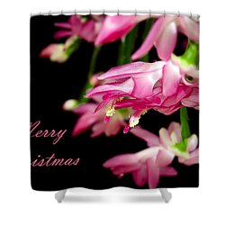 Christmas Cactus Greeting Card Shower Curtain by Carolyn Marshall