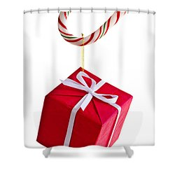 Christmas Candy Cane And Present Shower Curtain by Elena Elisseeva