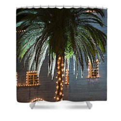 Christmas Palm Shower Curtain by Kenneth Albin