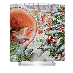 Christmas Robins Shower Curtain by Tony Todd