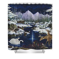 Christmas Wonder Shower Curtain by Lynn Bywaters