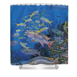 Chum Line Re0013 Shower Curtain by Carey Chen