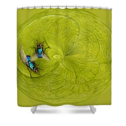 Circle Of Flies Shower Curtain by Jean Noren