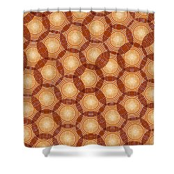 Circles Abstract Shower Curtain by Frank Tschakert