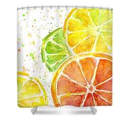 Citrus Fruit Watercolor Shower Curtain by Olga Shvartsur