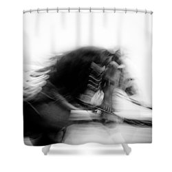 City Horses Shower Curtain by Dave Bowman