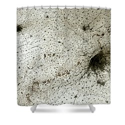 City Of Harbin Mandchouria China Shower Curtain by Anonymous