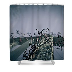 Cling To You Shower Curtain by Shane Holsclaw