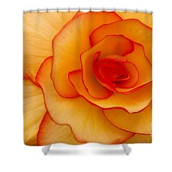 Close To Saturn Shower Curtain by Anne Gilbert