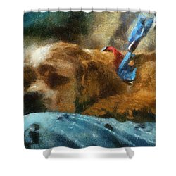 Cocker Spaniel Photo Art 07 Shower Curtain by Thomas Woolworth