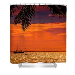 Cocktail Tropical Dream Shower Curtain by Jenny Rainbow