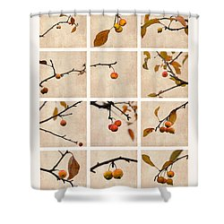 Collage Paradise Apple Shower Curtain by Alexander Senin