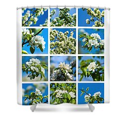 Collage Spring Blossoms 1 Shower Curtain by Alexander Senin