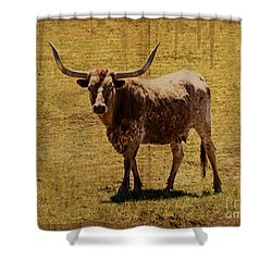 Colorado Longhorn Shower Curtain by Janice Rae Pariza