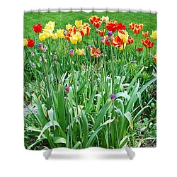 Colorful Spring Shower Curtain by Aimee L Maher Photography and Art Visit ALMGallerydotcom