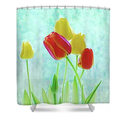 Colorful Spring Tulip Flowers Shower Curtain by Jennie Marie Schell