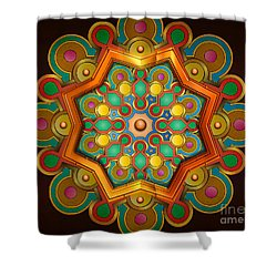 Colors Burst Shower Curtain by Bedros Awak