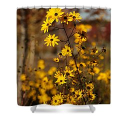Colors Of Autumn Shower Curtain by Sabrina L Ryan