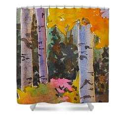 Colours Of The Rainbow Shower Curtain by Mohamed Hirji