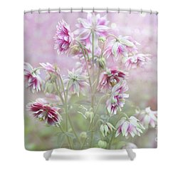 Columbine Beauty Shower Curtain by Elaine Manley