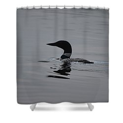 Common Loon Shower Curtain by James Petersen
