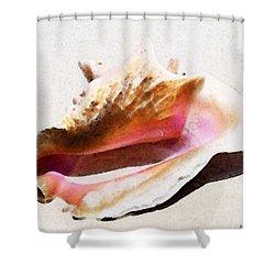 Conch Shell - Listen Shower Curtain by Sharon Cummings