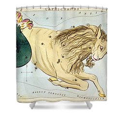 Constellation: Capricorn Shower Curtain by Granger