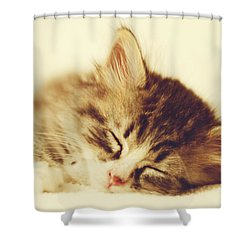 Content Kitty Shower Curtain by Pam  Holdsworth