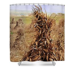 Corn Stalk Bales Shower Curtain by Marcia Colelli