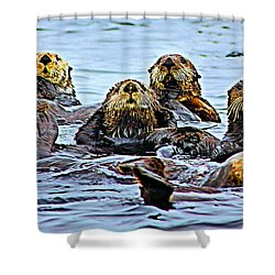 Couch Critters Shower Curtain by Kristin Elmquist