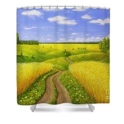 Country Road Shower Curtain by Veikko Suikkanen