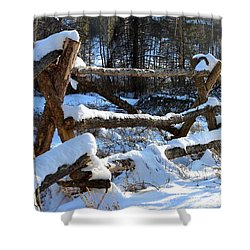 Covered In Snow Shower Curtain by Fiona Kennard