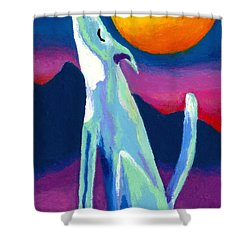 Coyote Azul Shower Curtain by Stephen Anderson