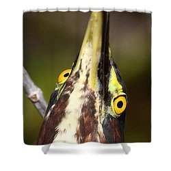 Crazy Eyes Shower Curtain by Bruce J Robinson