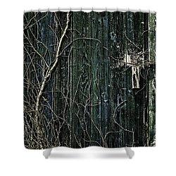 Creeper Shower Curtain by Andrew Paranavitana