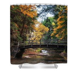 Crossing Over Shower Curtain by Mark Papke