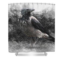 Crow Shower Curtain by Taylan Apukovska