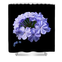 Crown Of Glory Shower Curtain by Doug Norkum