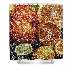Crystal Grapefruit Shower Curtain by Yael VanGruber
