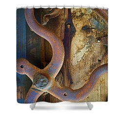 Curves And Lines II Shower Curtain by Stephen Anderson