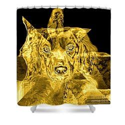 Dachshund Art Shower Curtain by Maria Urso