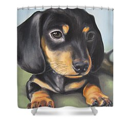 Dachshund Puppy Shower Curtain by Jindra Noewi