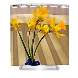 Daffodil Boquet Shower Curtain by Chris Berry