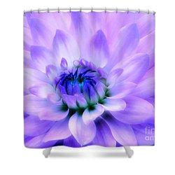 Dahlia Dream Shower Curtain by Rory Sagner
