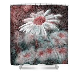 Daisies ... Again - P11ac2t1 Shower Curtain by Variance Collections