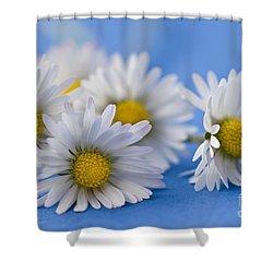 Daisies On Blue Shower Curtain by Jan Bickerton