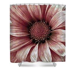 Daisy Daisy Blush Pink Shower Curtain by Angelina Vick